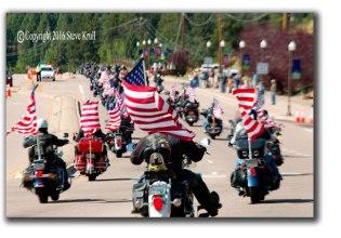 Flag-Wavers.jpg