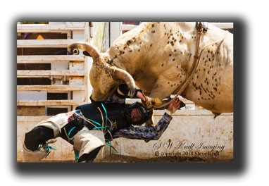 Bull Riders at the Top of the World Rodeo