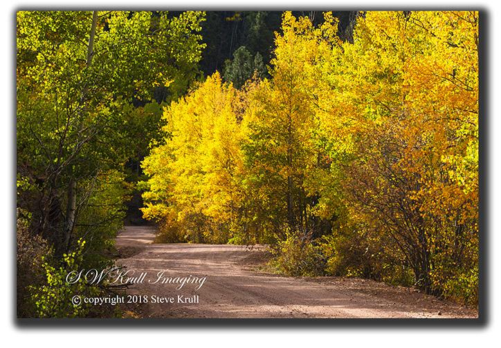 Phantom Canyon Drive in Autumn