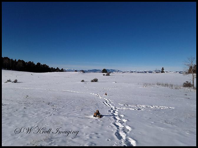 Snow in the Colorado Rockies