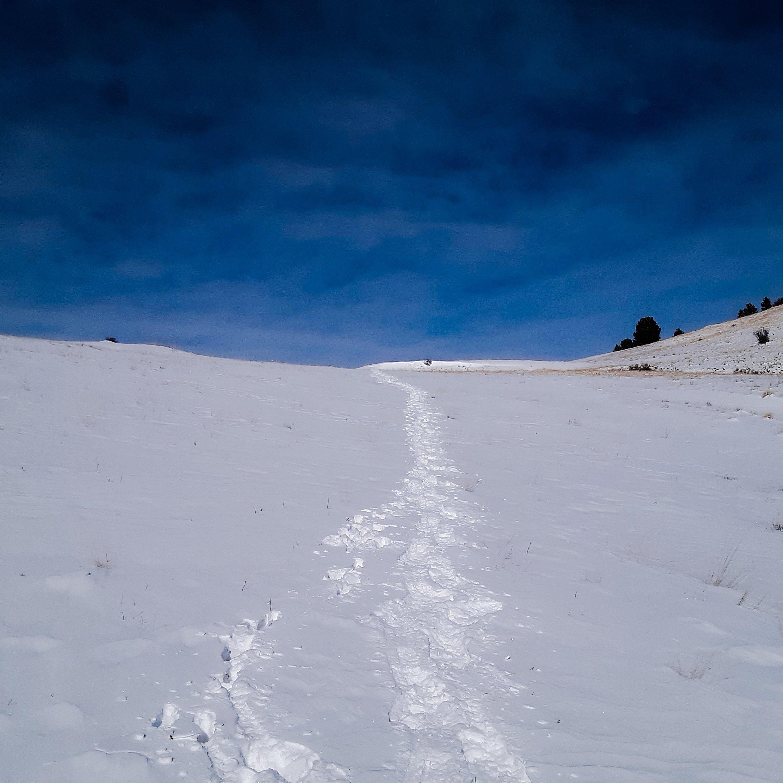 Deep Colorado Mountain Snow