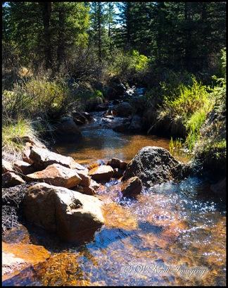 Anne-Marie Falls