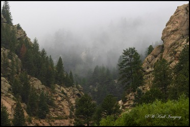 Beautiful Eleven Mile Canyon Colorado