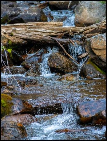 Browns Pass Hartenstein Trail