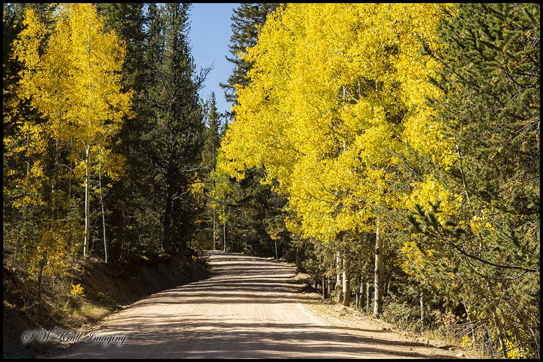 Autumn on Anne-Marie Falls Trail