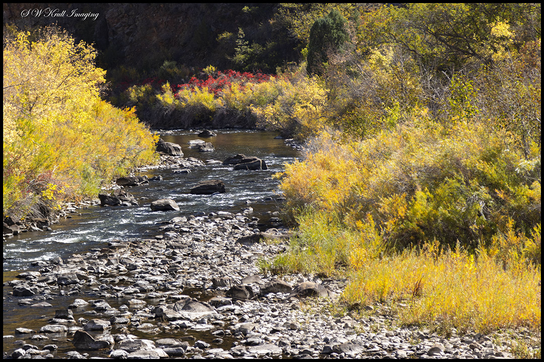 Autumn Colors on the South Platte River