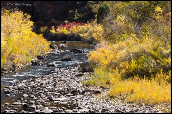 Autumn Colors on the South Platte River