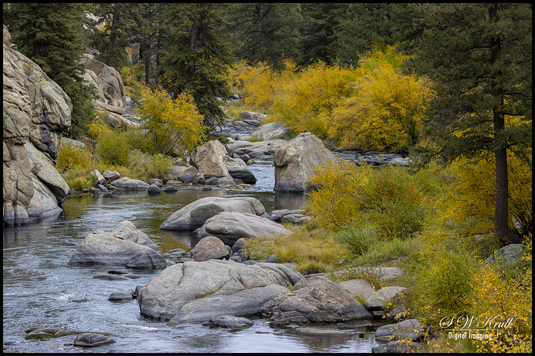 Autumn in Eleven Mile Canyon