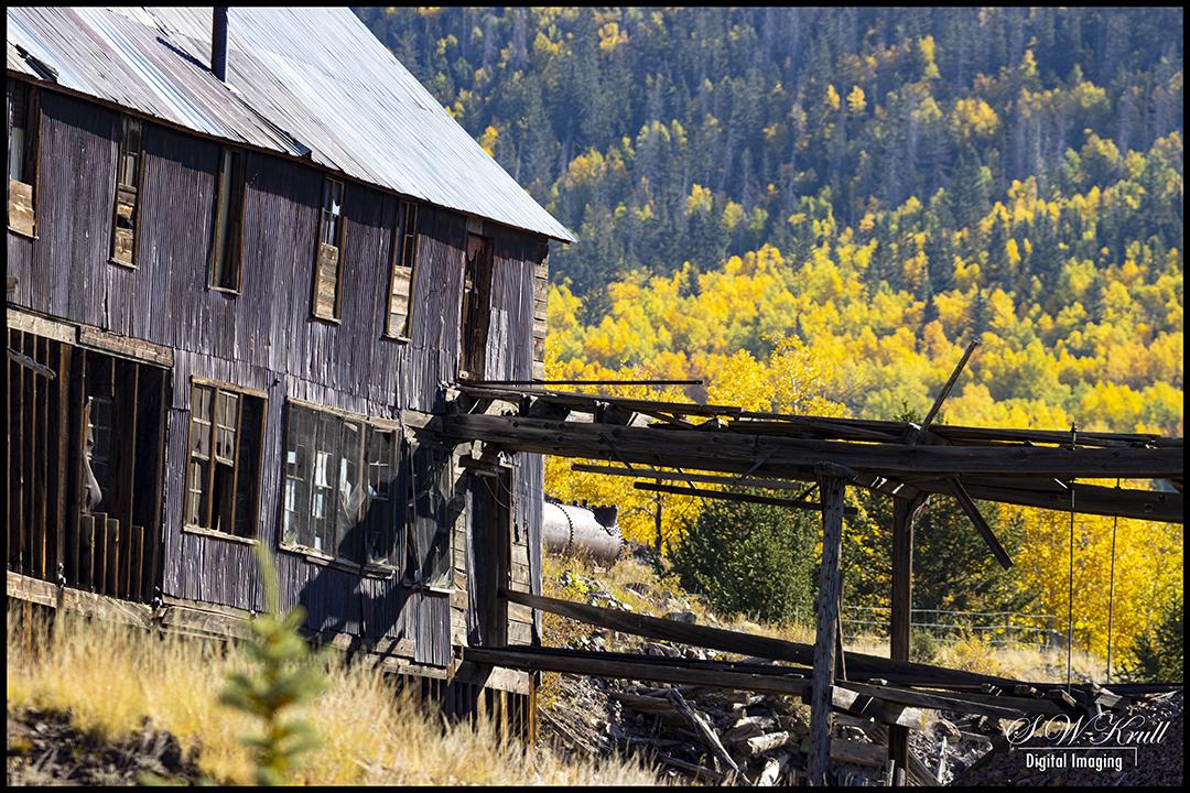 Gold Mine in Autumn